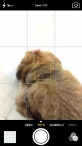 iOS7-b4-camera
