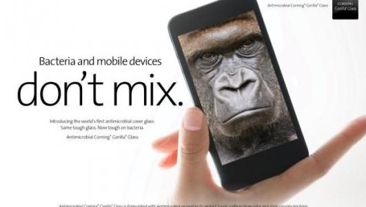 gorilla-glass-bacteria