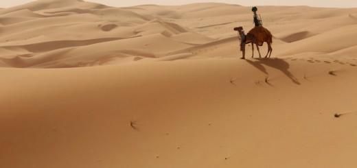 camel-strret-view