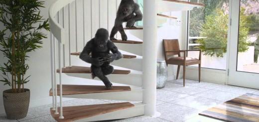 gorilla-glass-4-vem-ai-2x-mais-resistente