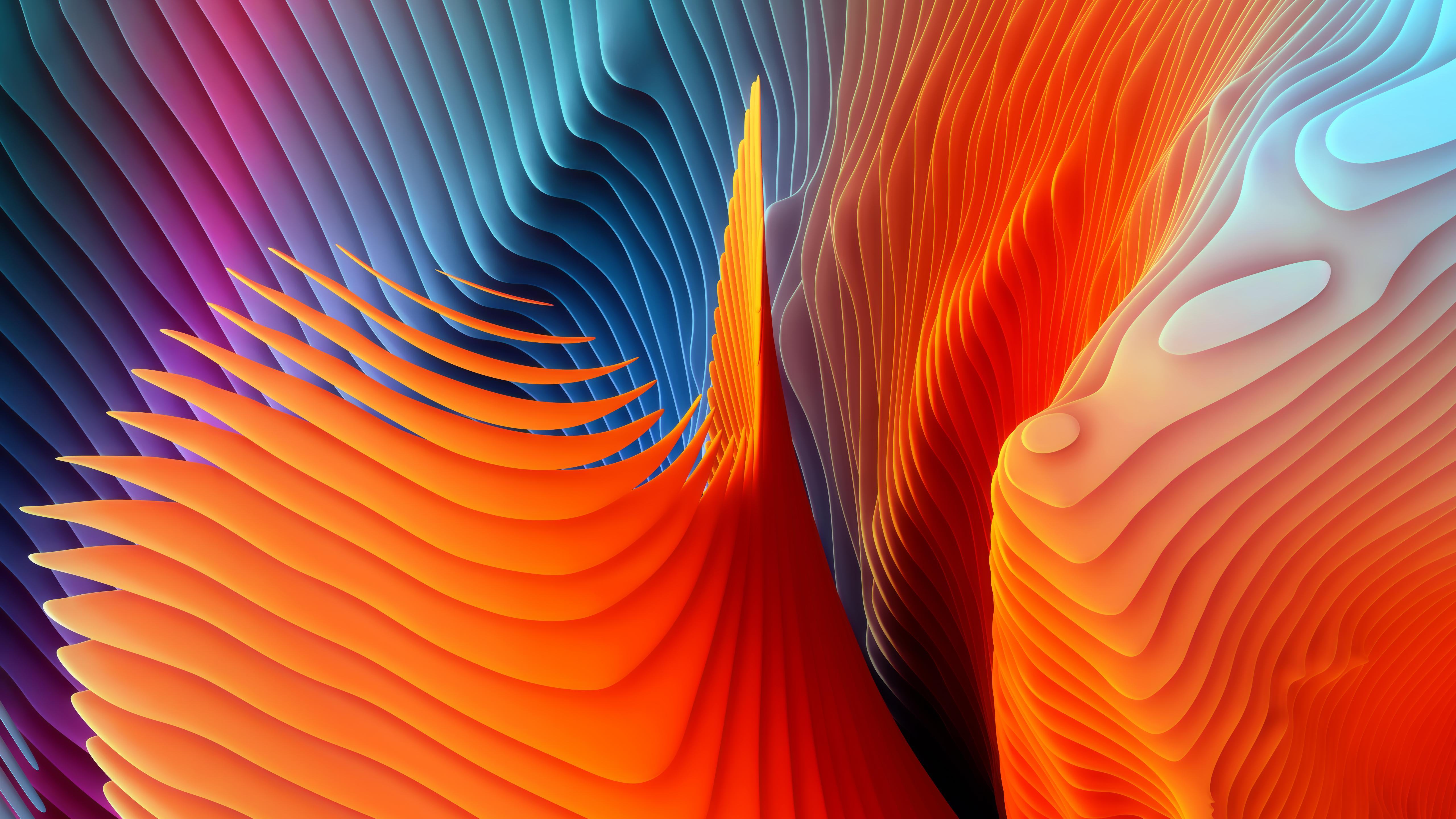 explosao-de-cores-1