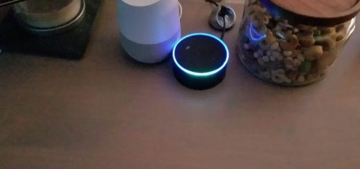 google-home-amazonecho